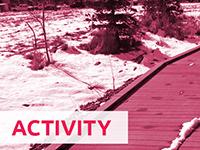 Theme: Activity